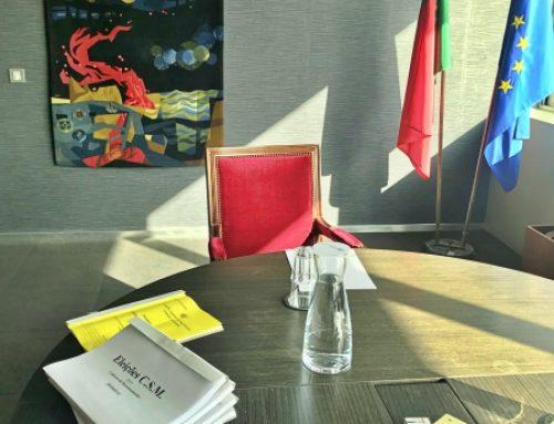 Eleição dos Vogais Juízes do CSM – Substituição de Delegada